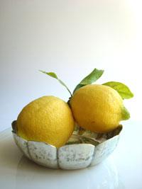 SP-Lemons1