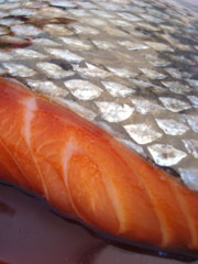 SP-Salmon-Teriyaki-detail-2