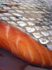 SP-Salmon-Teriyaki-detail-2