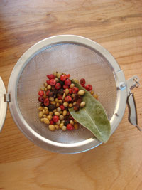 SP-tea-strainer-spices